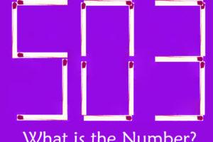 Brain Teaser Matchstick Puzzle