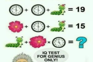 Maths Logical Resoning Puzzle