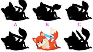 Shadow Puzzles