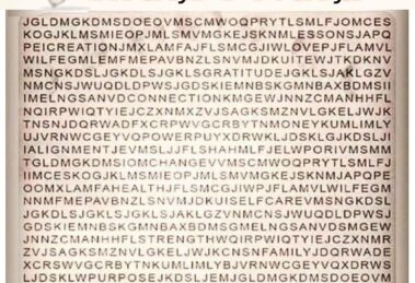 Words Search Puzzle